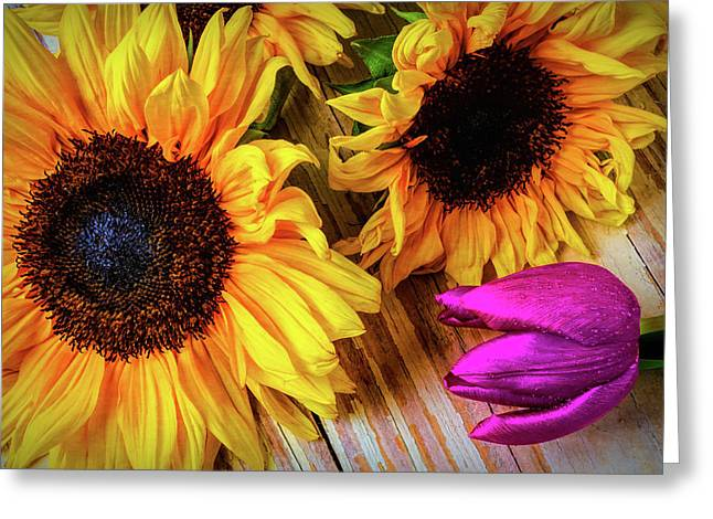 Sunflowers And Purple Tulip Greeting Card by Garry Gay