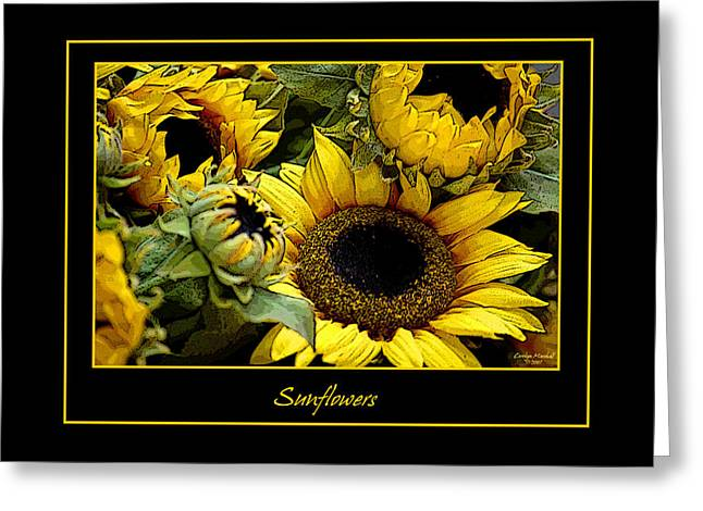Sunflowers Greeting Card by Carolyn Marshall
