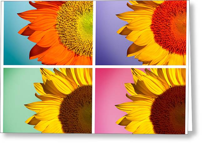 Sunflowers Collage Greeting Card by Mark Ashkenazi