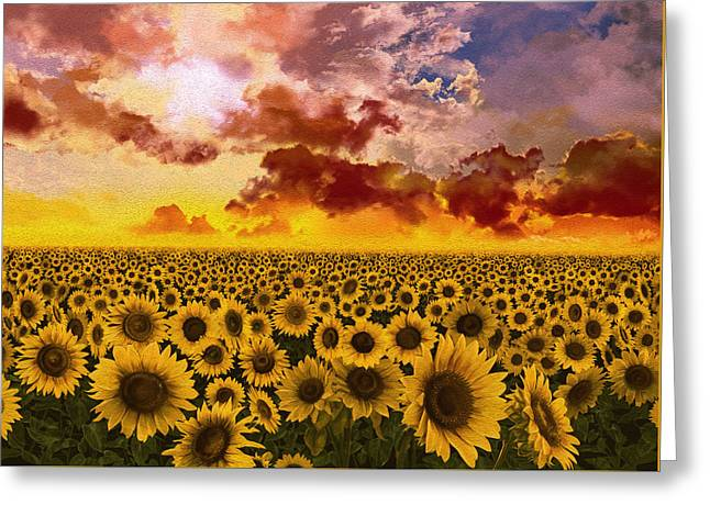 Sunflowers Field 1 Greeting Card by Bekim Art