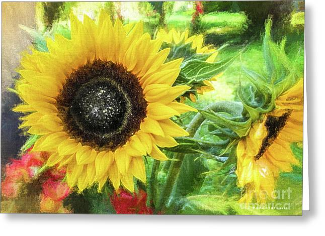 Yellow Sunflowers Flourish Visions Of Summer Greeting Card