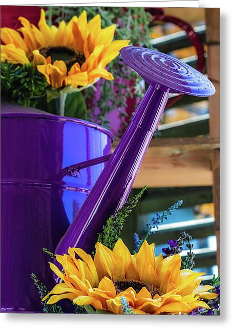 Greeting Card featuring the photograph Complementary Sunflowers by Laura Roberts