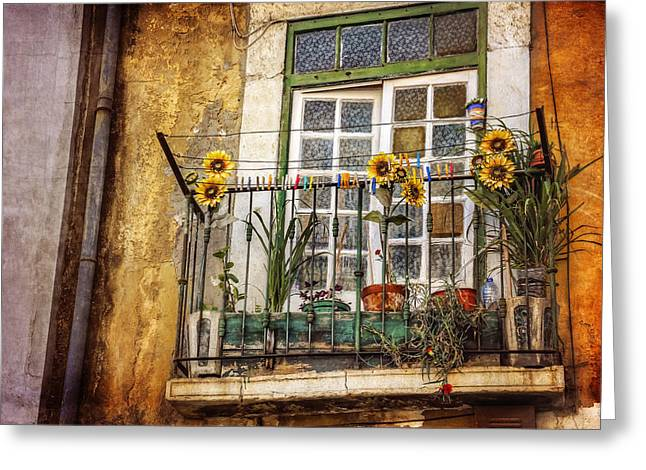 Sunflowers In The City Greeting Card by Carol Japp