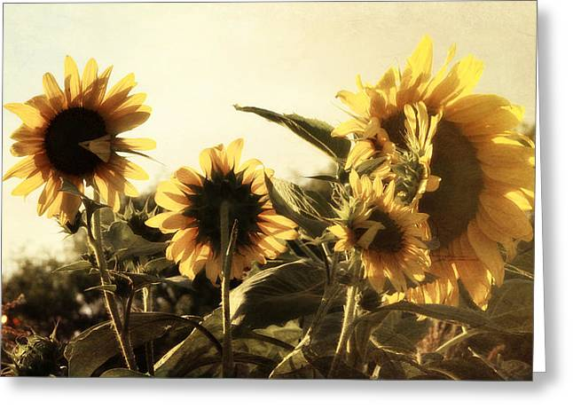 Greeting Card featuring the photograph Sunflowers In Tone by Glenn McCarthy Art and Photography