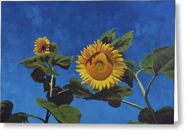 Sunflowers Greeting Card by Marco Busoni