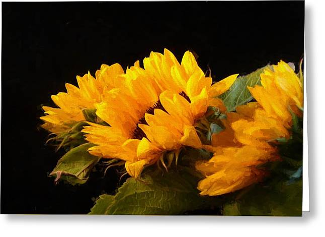 Sunflowers On A Black Background Greeting Card