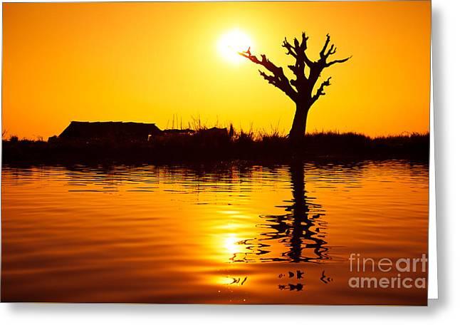 Sunfruit Greeting Card by Irina No