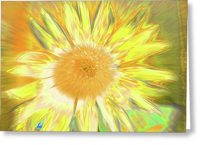 Sunking Greeting Card