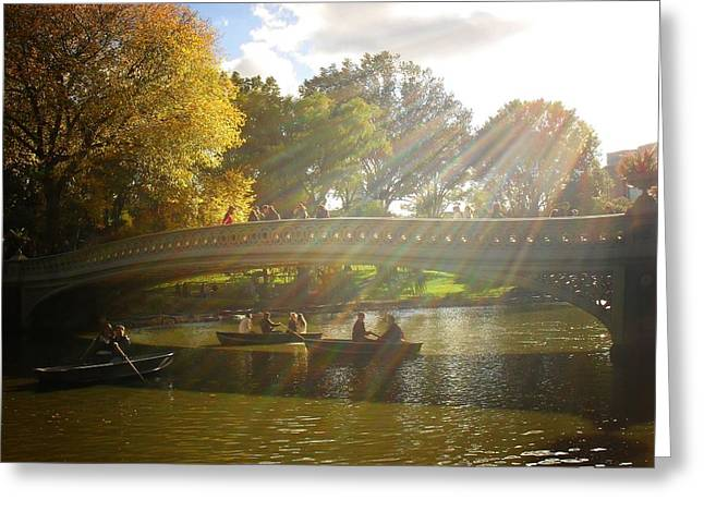 Sunlight And Boats - Central Park -  New York City Greeting Card by Vivienne Gucwa
