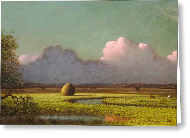 Sunlight And Shadow The Newbury Marshes Greeting Card by Martin Johnson Heade