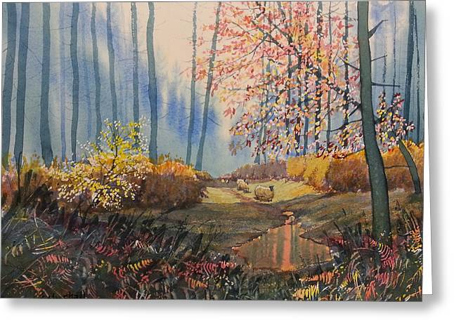 Sunlight And Sheep In Sledmere Woods Greeting Card