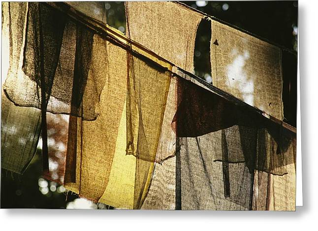Sunlight Filters Through Prayer Flags Greeting Card by Michael Melford