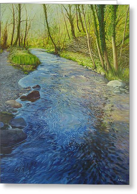 Sunlight In The Glen Greeting Card by Eamon Doyle