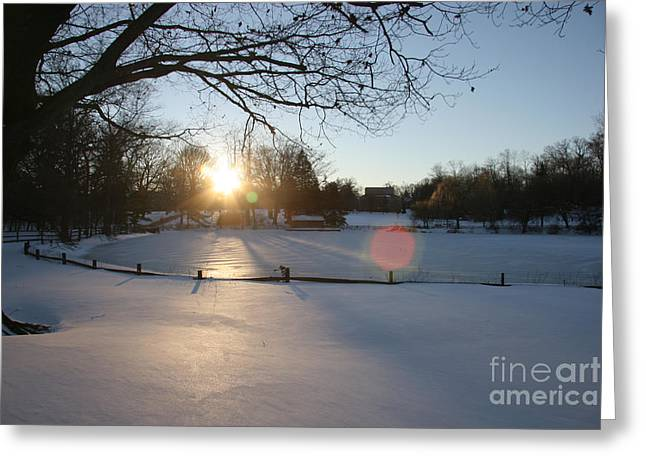 Sunlight On A Frozen Pond  Greeting Card