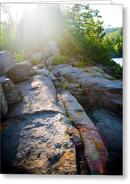 Sunlight On Cove Point Greeting Card