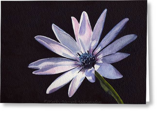 Sunlit Daisy Greeting Card by Kathy Nesseth