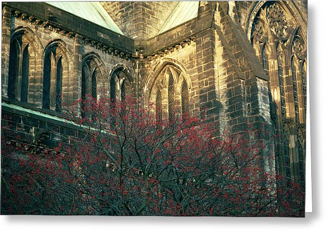 Sunlit Glasgow Cathedral Greeting Card