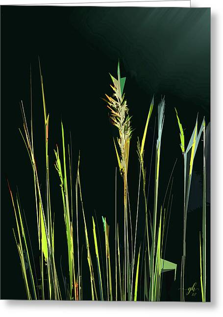 Greeting Card featuring the digital art Sunlit Grasses by Gina Harrison