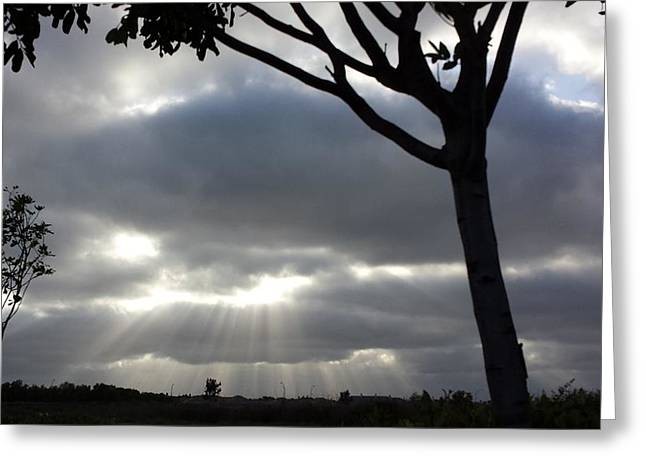Sunlit Gray Clouds At Otay Ranch Greeting Card