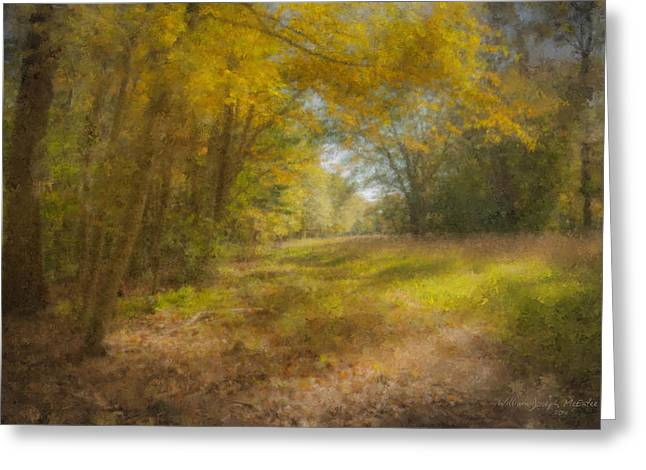 Sunlit Meadow In Borderland Greeting Card