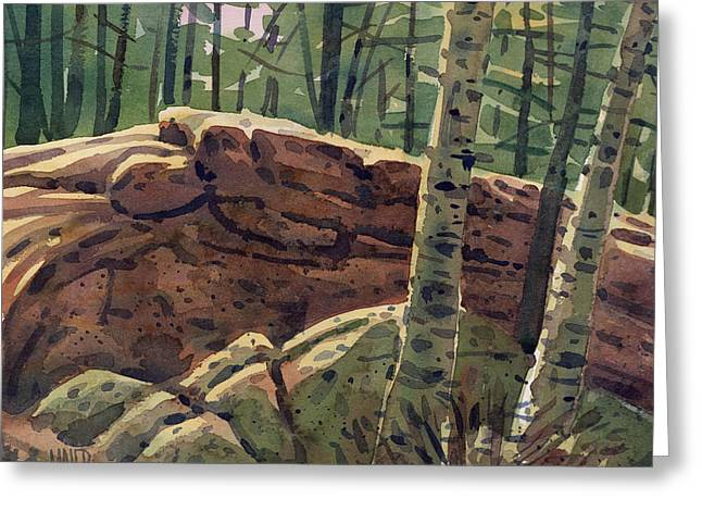 Sunlit Rocks Greeting Card by Donald Maier