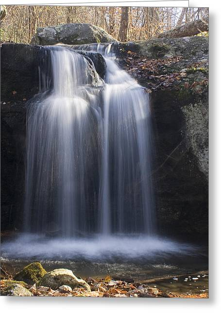 Greeting Card featuring the photograph Sunlit Streams by Alan Raasch