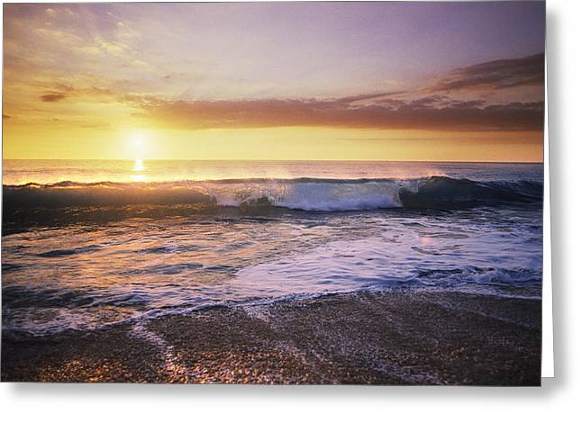 Sunlit Wave Greeting Card by Peter French - Printscapes