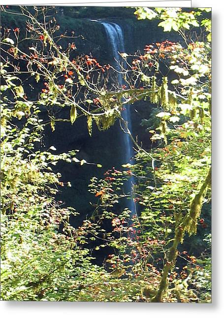 Sunlite Silver Falls Greeting Card