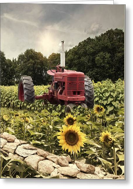 Greeting Card featuring the photograph Sunny Acres by Robin-Lee Vieira