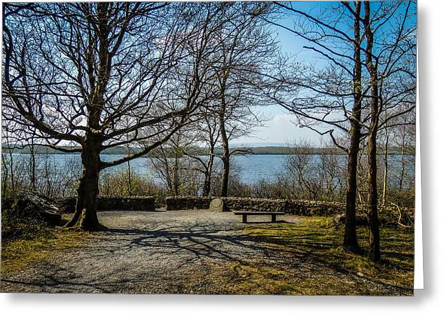 Sunny Afternoon At Lough Coole Greeting Card