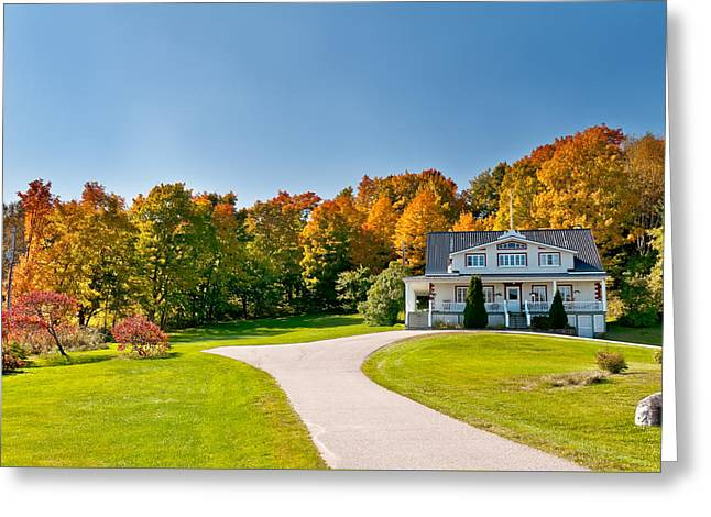 Fall Trees Greeting Cards - Sunny Autumn Greeting Card by Ulrich Schade
