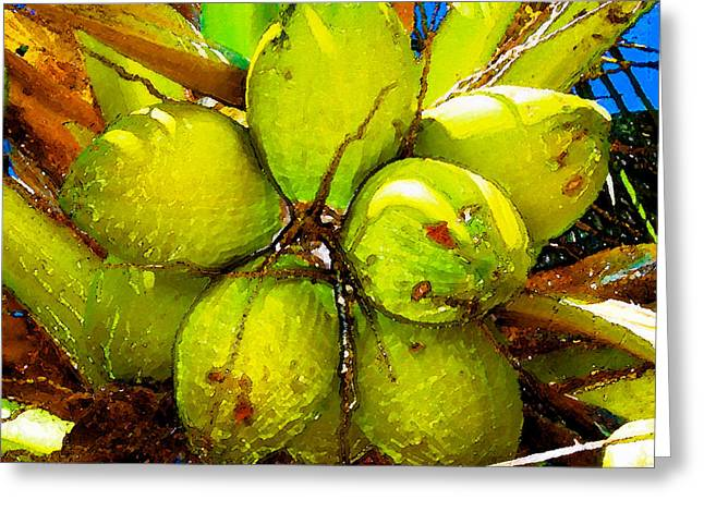 Sunny Coconuts Greeting Card by David Lee Thompson