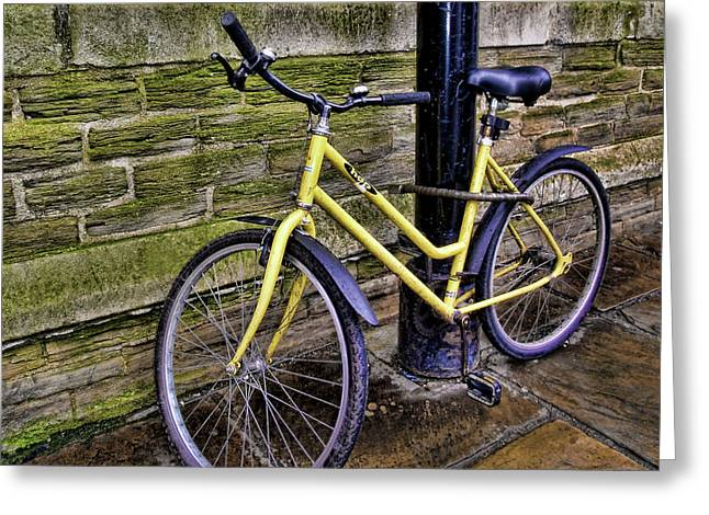 Sunny Cycle Greeting Card by JAMART Photography