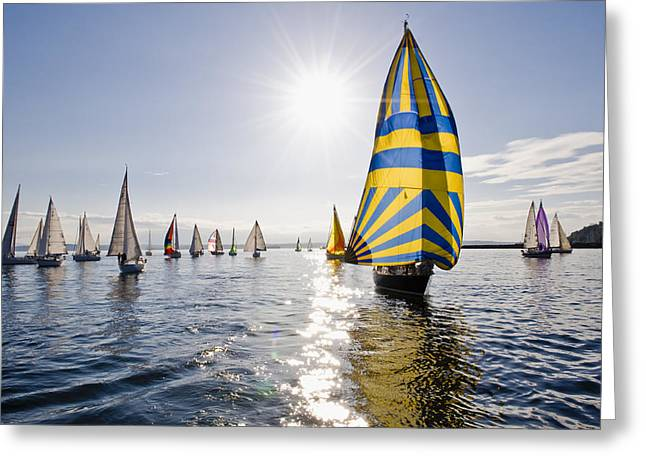 Sunny Day Sailing Greeting Card by Tom Dowd