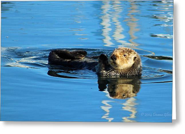 Sunny Faced Sea Otter Greeting Card