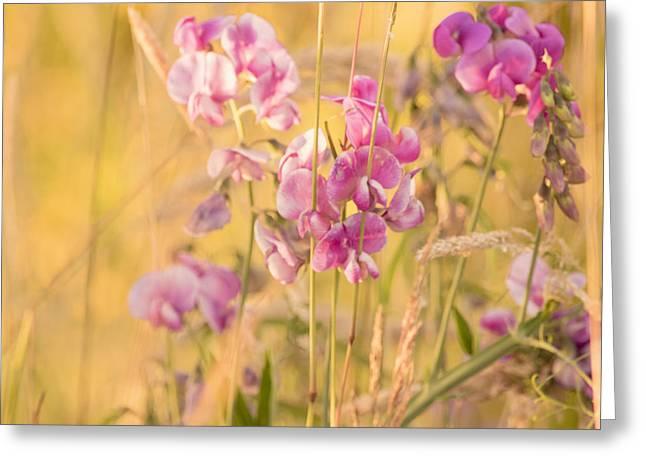 Sunny Garden 3 Greeting Card by Bonnie Bruno