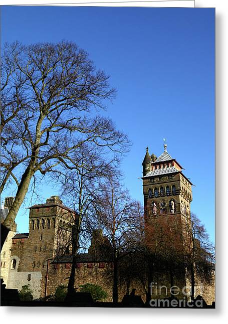Sunny Winter Day Cardiff Castle Greeting Card