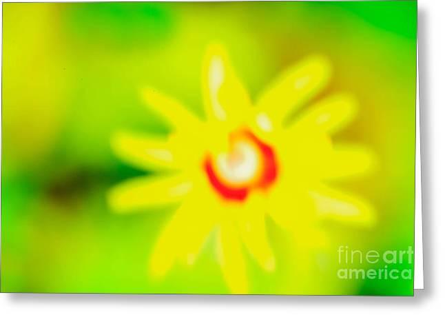 Sunnyday Greeting Card by Kim Henderson