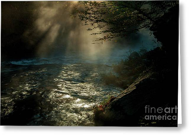 Sunrays At Fork River Greeting Card by Iris Greenwell