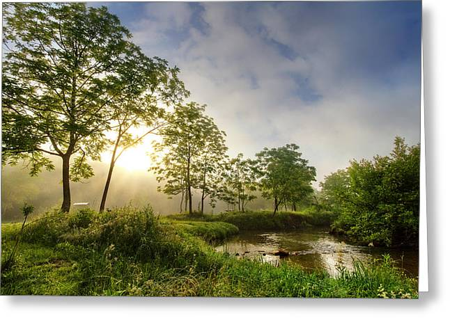 Sunrays On The Creek Greeting Card by Debra and Dave Vanderlaan