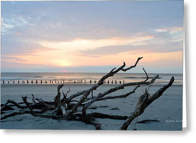 Greeting Card featuring the photograph Sunrise @ Pea Island by Barbara Ann Bell