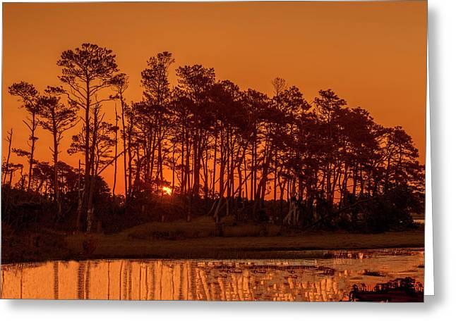Sunrise Along A Tree Line Greeting Card