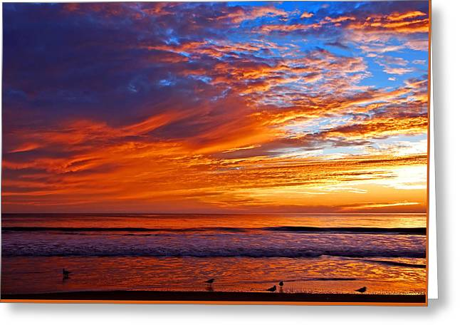 Sunrise And Seagulls Greeting Card