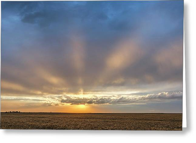 Sunrise And Wheat 03 Greeting Card