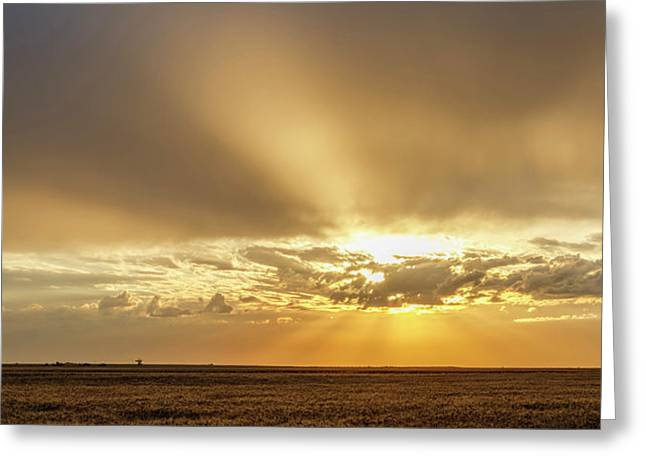 Greeting Card featuring the photograph Sunrise And Wheat 04 by Rob Graham