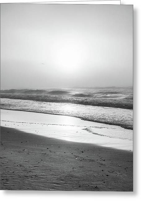 Greeting Card featuring the photograph Sunrise At Beach Black And White  by John McGraw