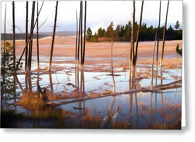 Sunrise At Fountain Paint Pots, Yellowstone National Park, Usa Greeting Card by Greg Sigrist