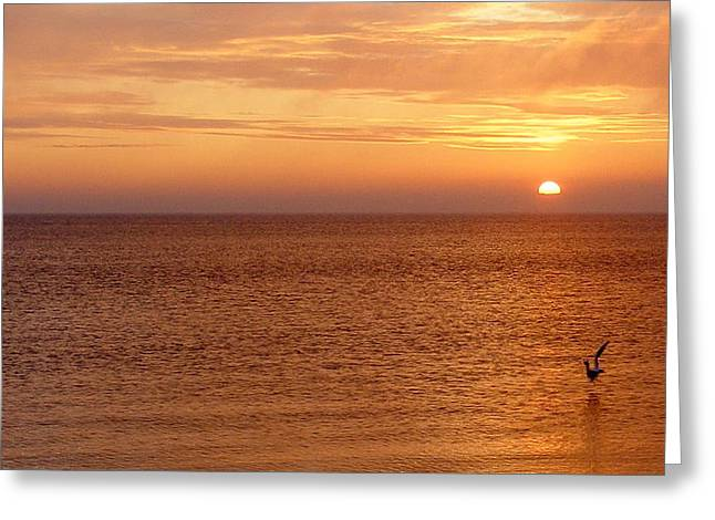 Greeting Card featuring the photograph Sunrise At Helleruphavn by Michael Canning