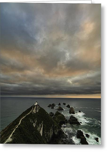 Sunrise At Nugget Point Greeting Card by Ian Riddler