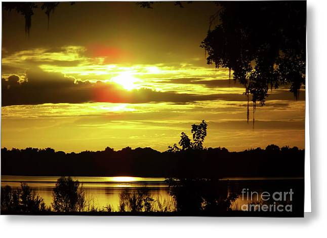 Sunrise At The Lake Greeting Card